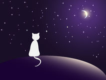 Lonely cat watching stars. Vector EPS10 Illustration Royalty Free Stock Photos