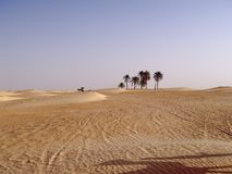 Lonely chariot. In Sahara royalty free stock images