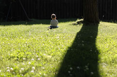Lonely child. Playing on the grass Stock Photos