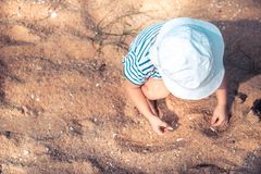 Lonely child toddler playing with sand and sea shells on beach happy childhood lifestyle with copy space royalty free stock image