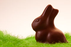 Lonely chocolate rabbit on grass Royalty Free Stock Photo