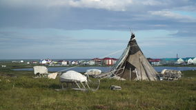 Lonely chum near the Northern settlement. The Yamal Peninsula. Summer in tundra stock footage