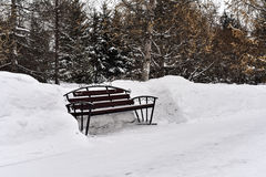 Lonely city park bench surrounded by snow Royalty Free Stock Photography