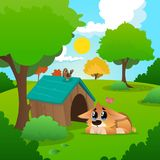 Lonely corgi with tears on eyes lies near wooden house. Summer nature landscape with blue sky, white clouds, grass. Lonely corgi with tears on eyes lies near his Royalty Free Stock Images