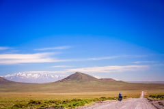 Lonely cyclist cycling on the Ruta 40 Royalty Free Stock Images