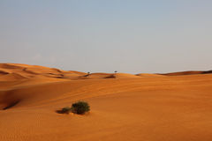 Lonely Desert Dunes Stock Images