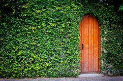 Lonely door Stock Photography