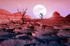 Lonely dry trees in the desert against a beautiful pink sky and a full moon. Moonlight in the desert. Artistic natural image. Alien Planet Concept stock photo