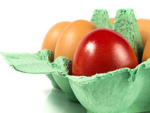 Lonely Easter Egg Royalty Free Stock Images