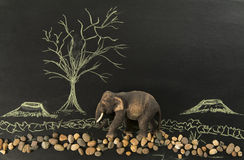 Lonely elephant in the deforest by human. In black background Royalty Free Stock Photo