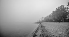 Lonely empty beach in November morning fog. royalty free stock images