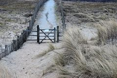 Lonely fence and grass covered sand dunes on the North Sea coast in the Netherlands. Near Noordwijk am Zee stock photo