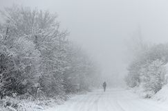 Lonely figure of human on a snowy road during the snowfalls in w. Inter royalty free stock photo