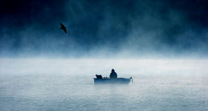 Lonely fisherman. And a flying bird Royalty Free Stock Photo
