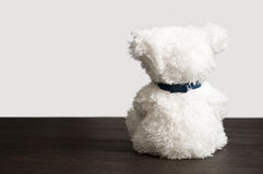 Lonely fluffy polar teddy bear sitting Royalty Free Stock Photo