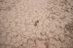 Lonely footprint on cracked white dusty ground royalty free stock photography