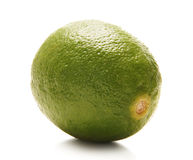 A lonely fresh and tasty green lime fruit on white Stock Photo