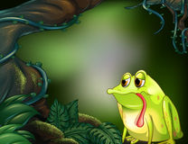 A lonely frog in a rainforest. Illustration of a lonely frog in a rainforest Stock Photography
