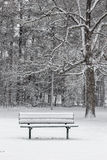 Snow covered bench near trees. Frosty snow covered bench at Slater Park on a snowy winter day Royalty Free Stock Image