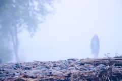 Lonely girl in the mist. Lonely girl and tree in the mist Royalty Free Stock Image