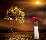 Lonely girl with umbrella near autumn tree in park outdoor. Stock Photography