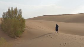Lonely girl walks along the sand dunes. Desert, a lonely girl walks along the sand dunes stock video footage