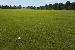 Lonely golf ball on huge green lawn Royalty Free Stock Image