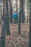 A lonely guy in a pine forest in the autumn time Stock Photos