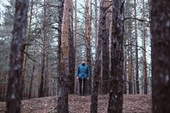 A lonely guy in a pine forest in the autumn time Royalty Free Stock Photo