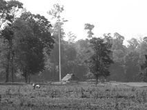 The lonely home. With a beautiful landscape in the Bartang, Andamans, India Royalty Free Stock Images