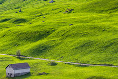 Lonely house at green hill Stock Image