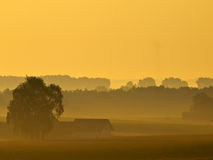 Lonely house during misty sunrise. In agricultural landscape Stock Photos