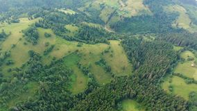 Aerial shot lonely houses in countryside on green meadow near forest in mountains stock video