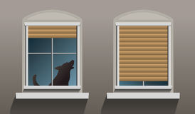 Lonely Howling Dog Windows. A lonely howling dog is sitting behind a window with partially let down shutters. Vector illustration on grey background Royalty Free Stock Photography