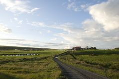 Lonely Islandic village. Lonely village on clear summer evening in Iceland Royalty Free Stock Photography