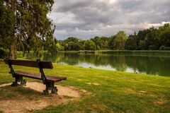 Lonely isolated bench against lake and green trees. Park.