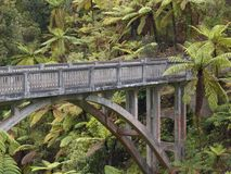 Lonely jungle bridge Stock Photos