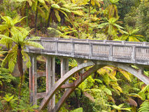 Lonely jungle bridge Royalty Free Stock Images