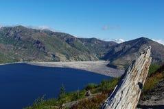 Lonely Log on Spirit Lake, Washington Royalty Free Stock Photo