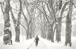 Lonely male figure in a blizzard Stock Photography