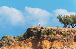Lonely male tourist. Lonely male tourist standing on the hill Royalty Free Stock Images