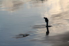 Lonely man. Walking at the beach Stock Images