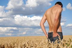 Lonely Man. Stands in ripe wheatfield Royalty Free Stock Photography