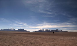The lonely man at Altiplano Stock Photography