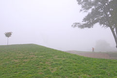 Lonely man in the autumn morning fog Stock Image