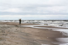 Lonely man on the beach. Amber gathering, stormy weather Royalty Free Stock Images