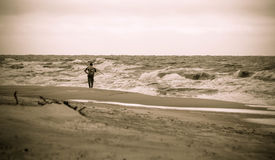 Lonely man on the beach. Amber gathering, stormy weather Royalty Free Stock Photo