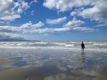 Lonely man on the beach. Rabbit Island, New Zealand royalty free stock images