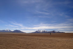 Lonely man in the dessert, altiplano, Bolivia. This young men is very small in the huge surroundings. Altiplano, Bolivia royalty free stock photo