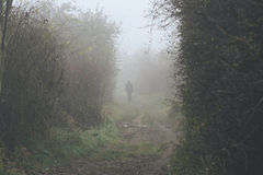 Lonely man disappearing in a fog during a cold dark day. Man walking on a path disapearing in the fog in a cold dark day Stock Image